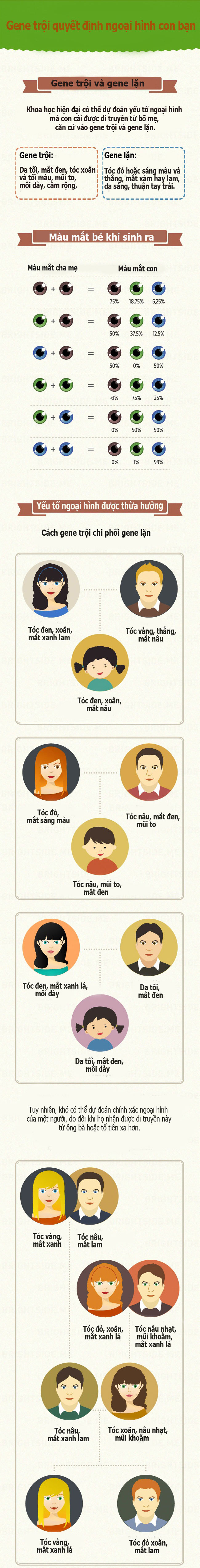 Nhìn bố mẹ dự đoán ngoại hình của con