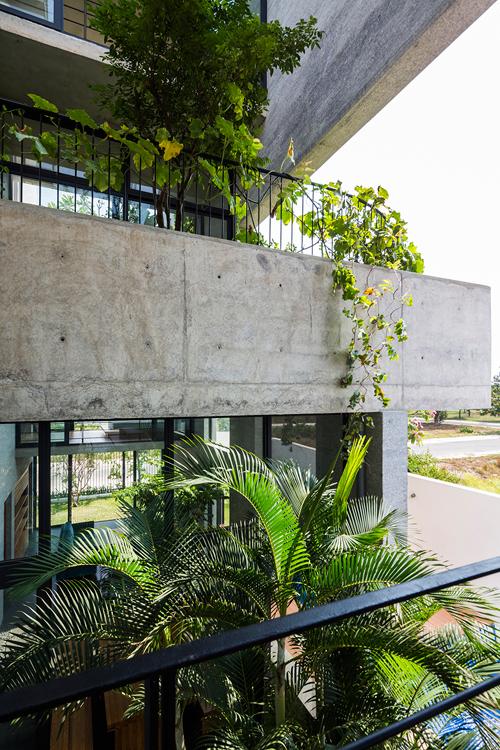 Căn nhà phố Sài Gòn xanh mọi góc nhìn nhờ 7 mảnh vườn