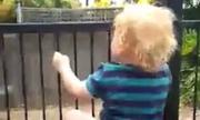 Cậu bé 2 tuổi trèo rào mở khóa chỉ trong 21 giây