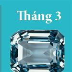 thang-sinh-tiet-lo-kha-nang-phong-the-cua-ban-2