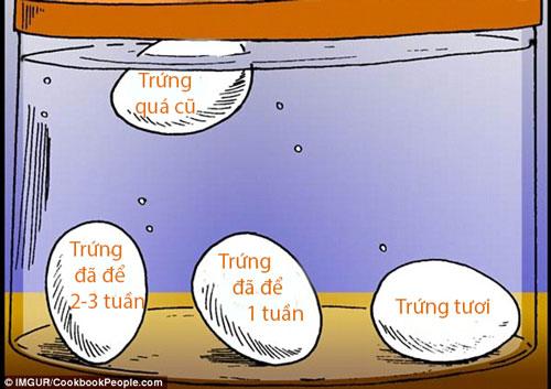 Chỉ một giây biết chính xác quả trứng đã để bao lâu - ảnh 1