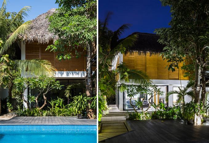 Nhà mái lá ở Trà Vinh khiến người thành phố cũng mơ ước