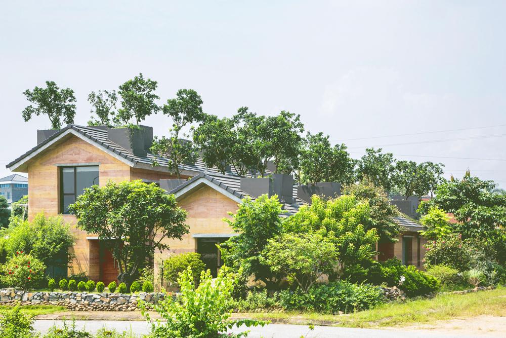 dat 1 1514358249 680x0 - Ngôi nhà đất có vườn bưởi trĩu quả trên mái ở Hà Nội