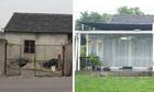 Cô gái 19 tuổi sửa kho bỏ hoang thành nhà vườn xanh mướt