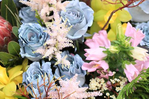 Những bông hoa màu bạc được nhập từ Hà Lan thuộc loại hiếm ở Việt Nam.