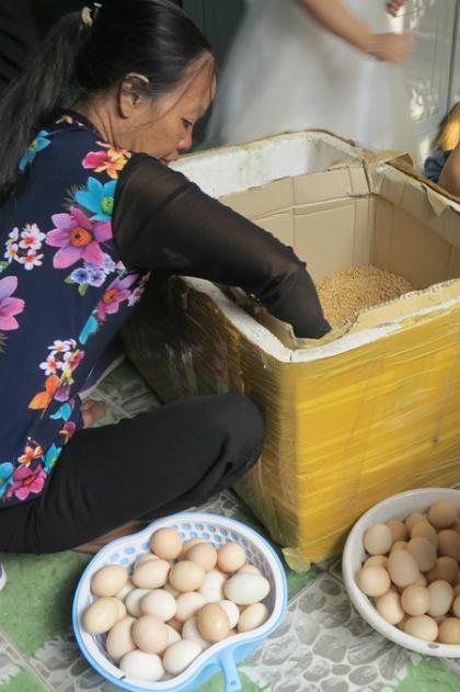 Số trứng gà, vịt đẻ trong một tháng, ông bà Tiễu giữ lại, phủ nhiều lớp trấu để đưa vào Sài Gòn làm quà. Ảnh: Phan Thân.