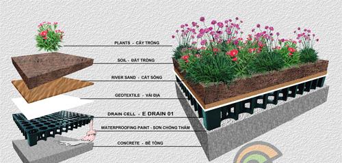 Gia chủ Hà Nội phải dỡ toàn bộ vườn trên mái vì ngấm nước - 1