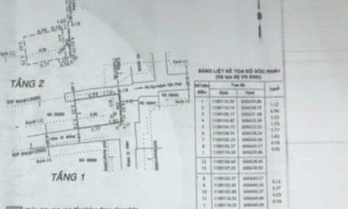 Những đường kẻ ..... có chú thích là Ranh LG mà anh Ngọc không nhận ra là đường Ranh Lộ giới khi xem giấy tờ nhà - Ảnh: NVCC