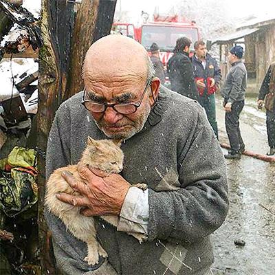 Ông Ali và gia đình đã mất toàn bộ tài sản khi ngôi nhà của họ ở Thổ Nhĩ Kỳ bị lửa thiêu rụi. Rất may mắn, không ai bị thương và ông cụ còn cứu được cả chú mèo của mình. Bức ảnh chụp ông Ali đang khóc cố cứu mèo con với khung cảnh bề bộn tro tàn phía sau đã được lan truyền khắp trên mạng.Chính quyền địa phương đã hỗ trợ cho gia đình ông để xây dựng lại ngôi nhà mới.
