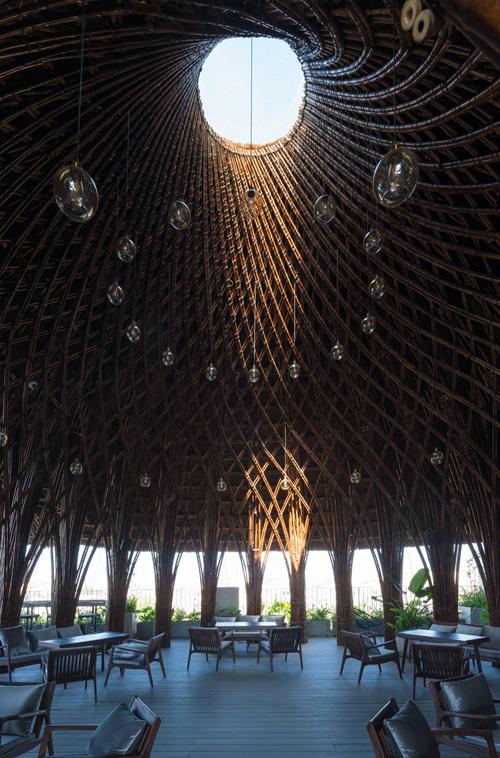 Mái vòm tre như hang động khổng lồ trên nóc ngôi nhà ở Vinh