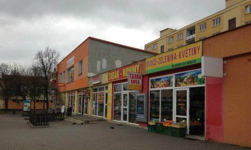 Dù đang có cửa hàng buôn bán tốttại thành phố Chomutov, Cộng hòa Czech, vợ chồng chị Bình vẫn quyết định về nước và không hề hối hận về quyết định này. Ảnh: Đ.L.