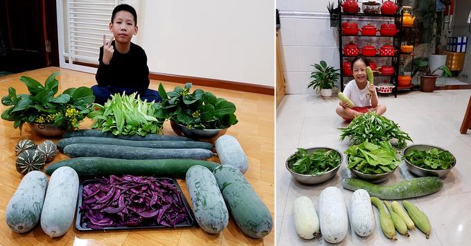Vườn sân thượng như siêu thị mini của gia đình Hải Phòng