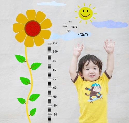 Từ 1-3 tuổi là giai đoạn trẻ phát triển chiều cao nhanh chóng.