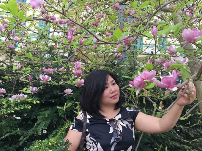 Người phụ nữ trồng sen đá hình bản đồ Việt Nam ở trời Tây