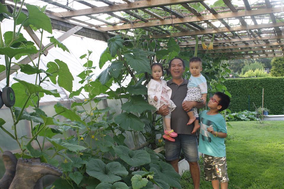 Giàn bầu bí 'mỏi tay' hái quả của gia đình Việt ở Czech