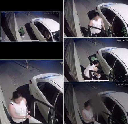 Hình ảnh người phụ nữ bị trộm cây được camera ghi lại.
