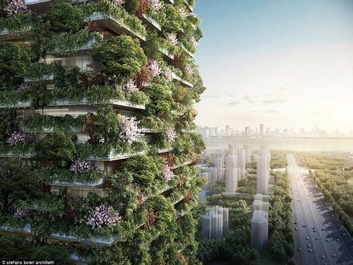 Nơi đây sẽ chứa hơn 1.000 cây và khoảng 2.500 cây bụi từ 23 loài cây bản địa khác nhau, mỗi ngày sẽ tạo ra khoảng 60kg oxy.