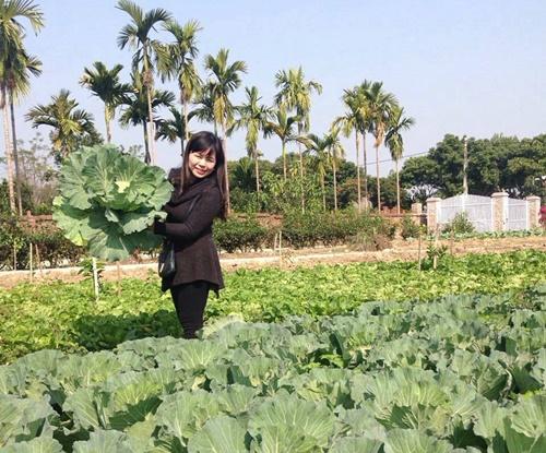 Khu vực trước nhà cũng được tận dụng để trồng rau.