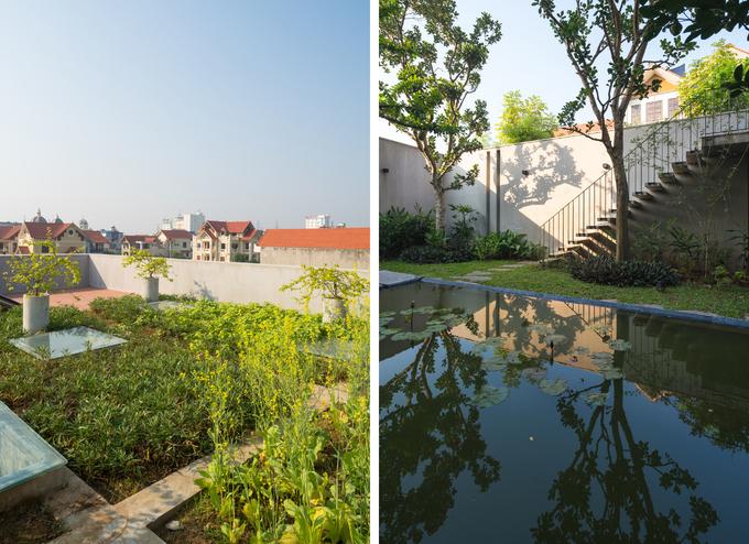 Vẻ xanh mát ẩn sau ngôi nhà 'lô cốt' ở Ninh Bình