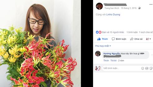 Hoa ly lửa được nhiều cửa hàng hoa nhập khẩu quảng cáo trên mạng.