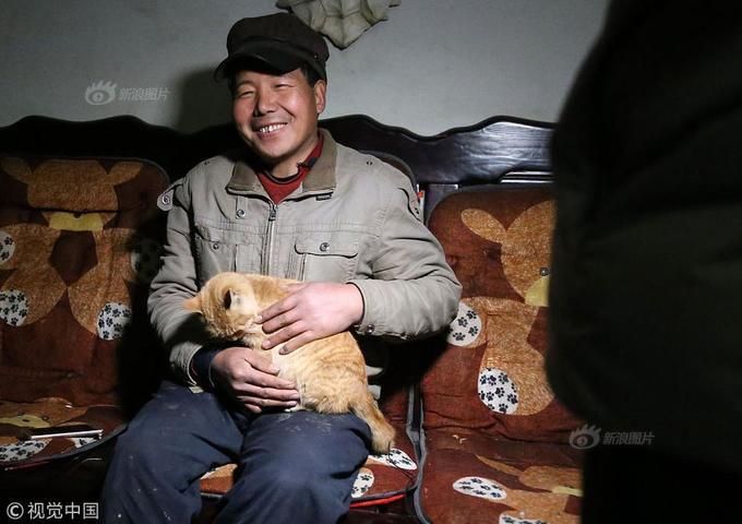 Bác nông dân dẫn cừu, lợn, gà vịt trong nhà đi diễn xiếc - ảnh 13