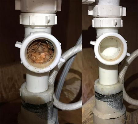 Thức ăn có thể tắc cứngở các đoạn ống nối, bạn cần tháo ra để làm sạch, khi các biện pháp khác không hiệu quả.