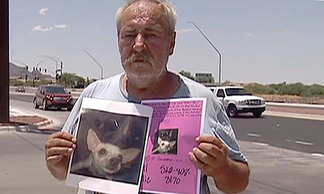 Ông Collins ôm hai ảnh chú chó đi tìm gần 3 tháng nay. Ảnh: Nypost.
