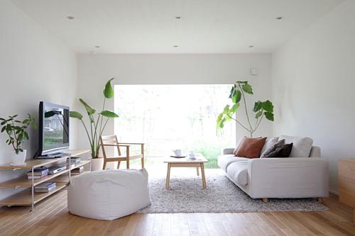 Cây xanh giúp ngôi nhà có sức sống. Ảnh: House designing.