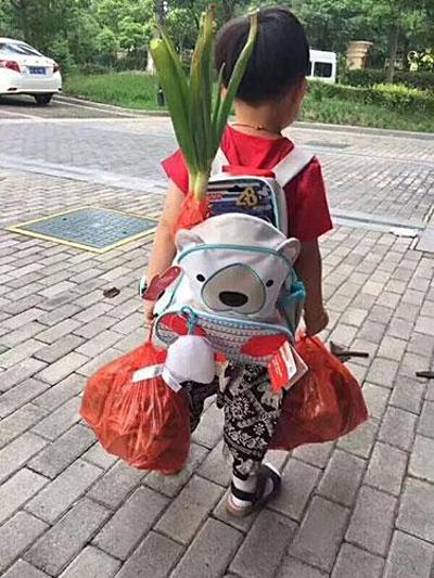 Em bé ở Giang Tô đeo hành đi khai giảng năm 2017. Ảnh: Sina.