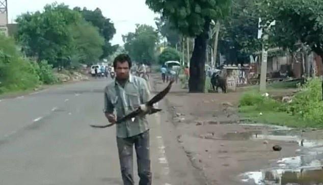Khu phố Shiva ở có gần 4.000 dân, nhưng lũ quạ chỉ chăm chăm làm hại anh. Ảnh: India Times.