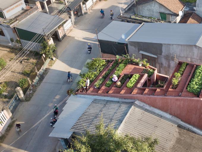 7 bậc thang trồng rau trên mái nhà Quảng Ngãi