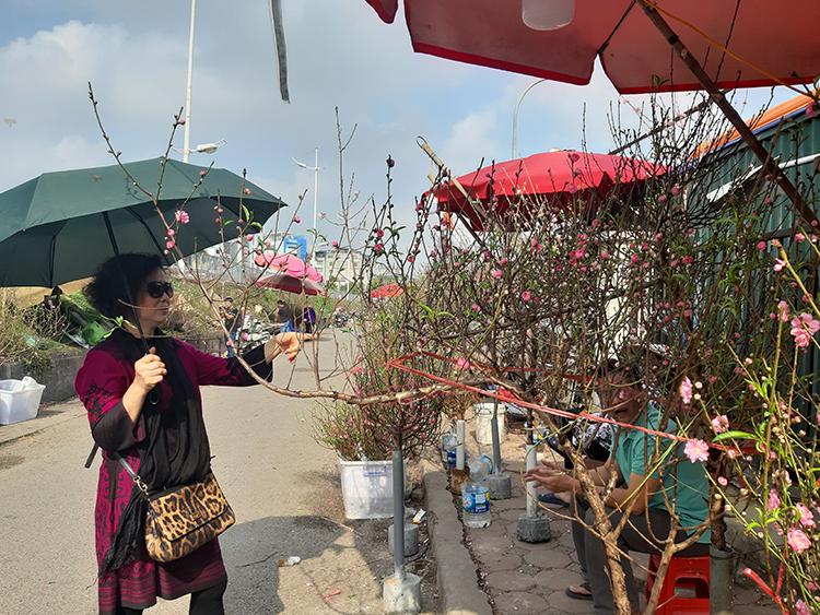 Chị Bích Hoa chọn được cành đào đơn giá 350.000 đồng tại chợ hoa Quảng Bá, Tây Hồ, Hà Nội. Ảnh: Phạm Nga.