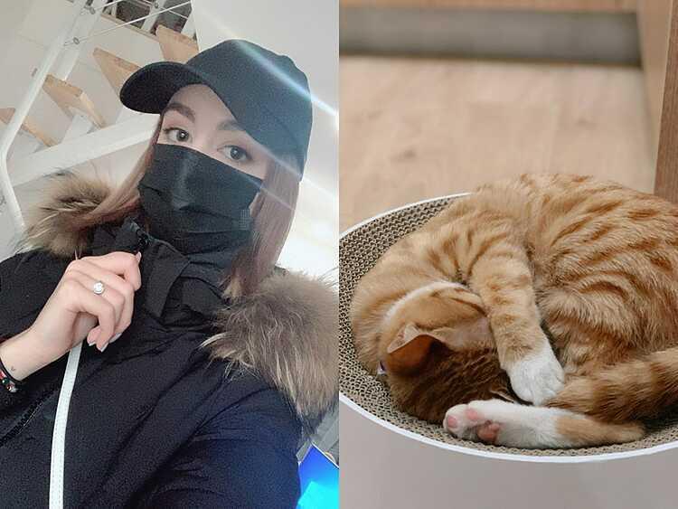 Ở lại Vũ Hán vì mèo cưng - ảnh 1