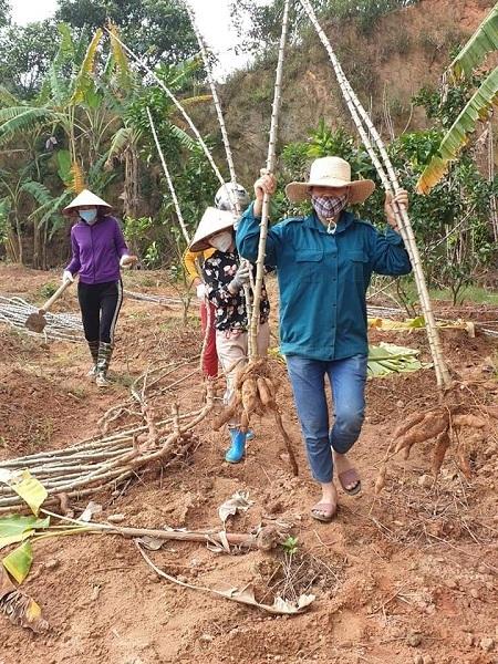Người dân xã Sơn Lôi vẫn sinh hoạt, làm việc bình thường dù bị cách ly. Ảnh: Phan Thảo.