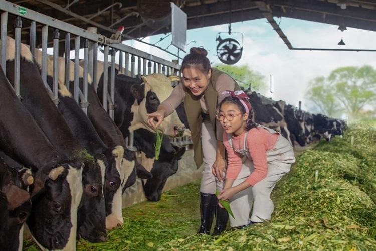 Trở về từ nông trại Cô Gái Hà Lan, Bông thường xuyên đố mẹ bò sữa ăn cỏ gì, người nông dân vắt sữa ra sao, hay kiến thức mà bé khám phá được suốt chuyến đi.