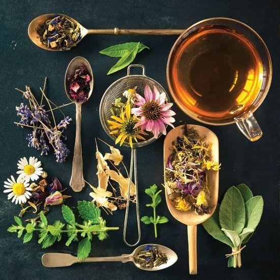 Các loại trà từ các loại lá – hoa – quả thiên nhiên là gợi ý cho người cao tuổi.
